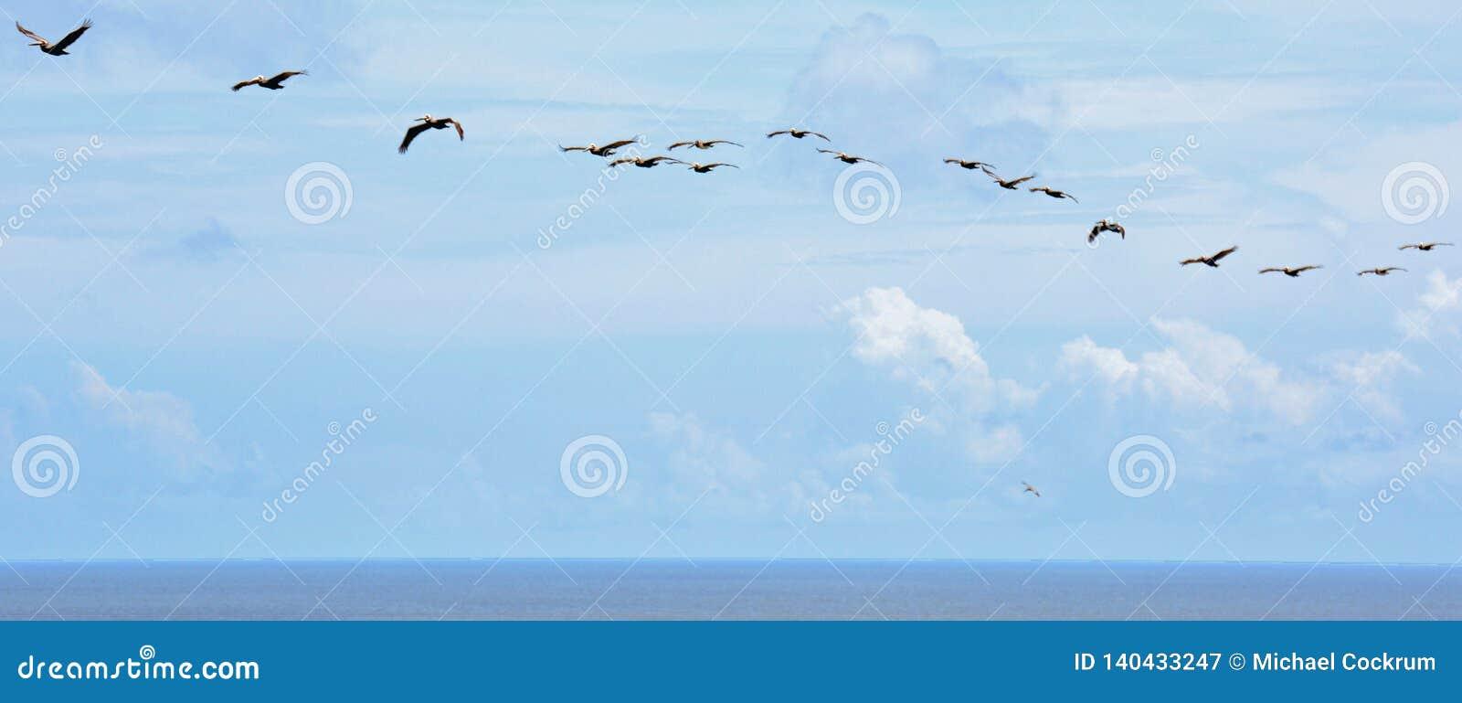 Opinião de olho de pássaro da parte superior de caçar o farol da ilha