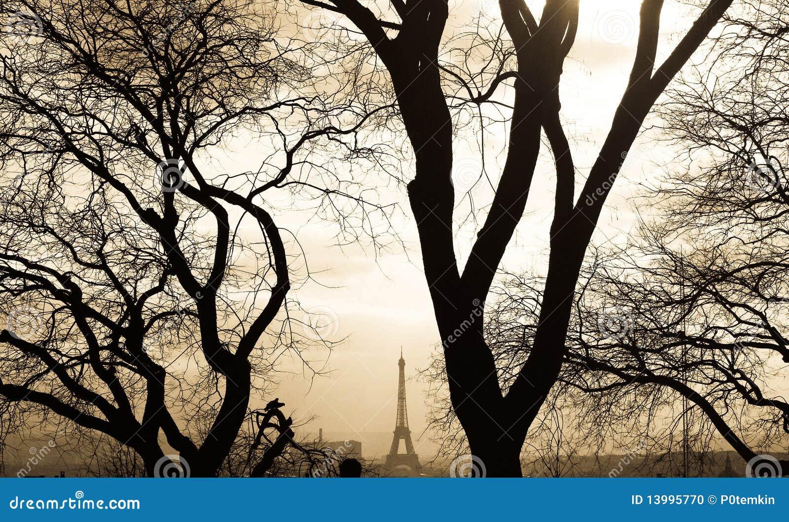 Opinião de Paris