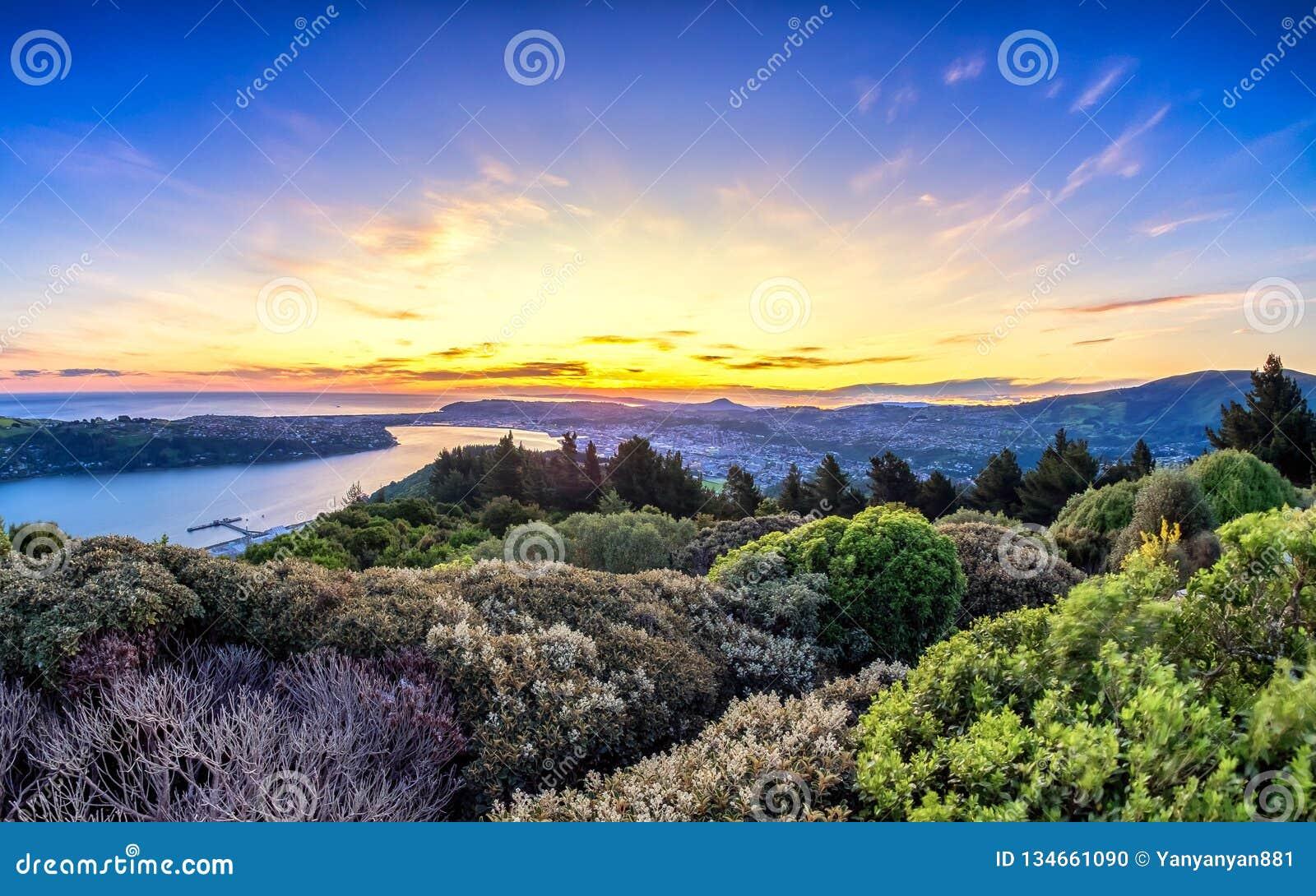 Opinião de surpresa do nascer do sol de uma parte superior do monte em Dunedin, Nova Zelândia