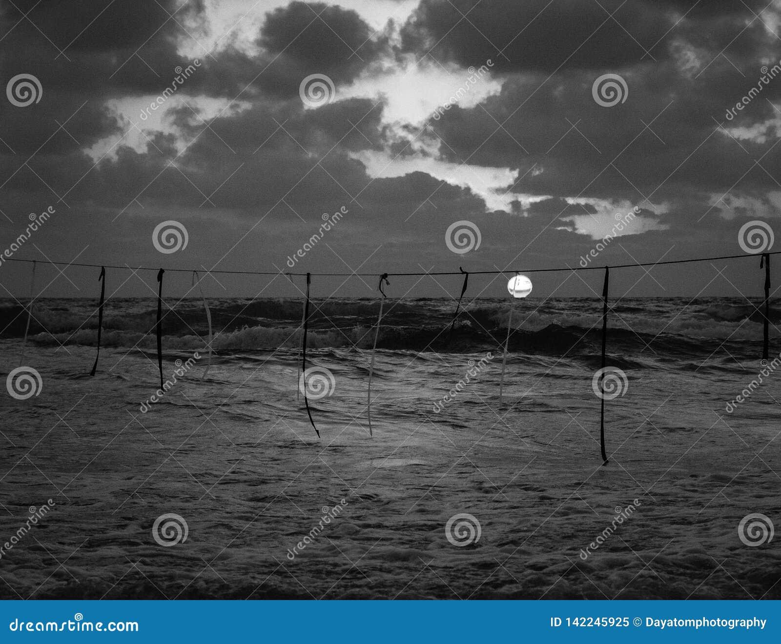 Opinião do por do sol do verão de uma praia sob um céu nebuloso em preto e branco, corda com as bandeiras que penduram no ar