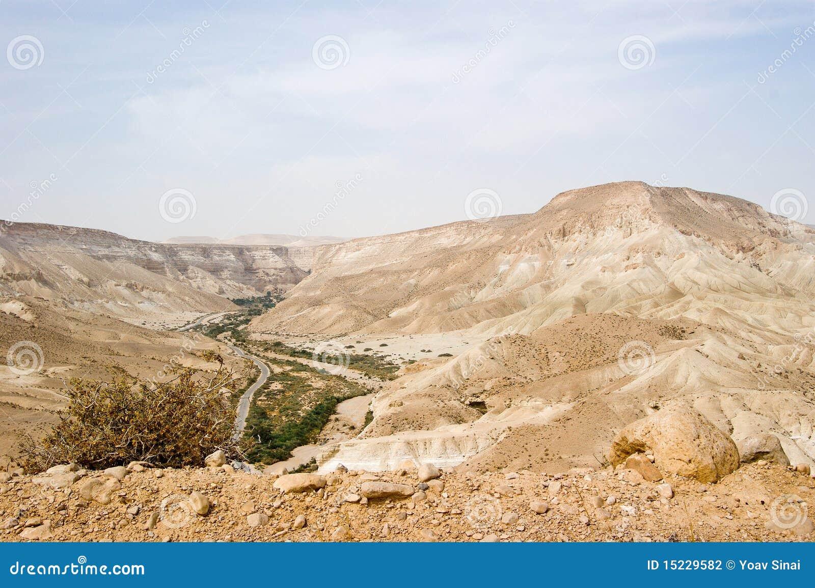 Opinião do rio de Zin