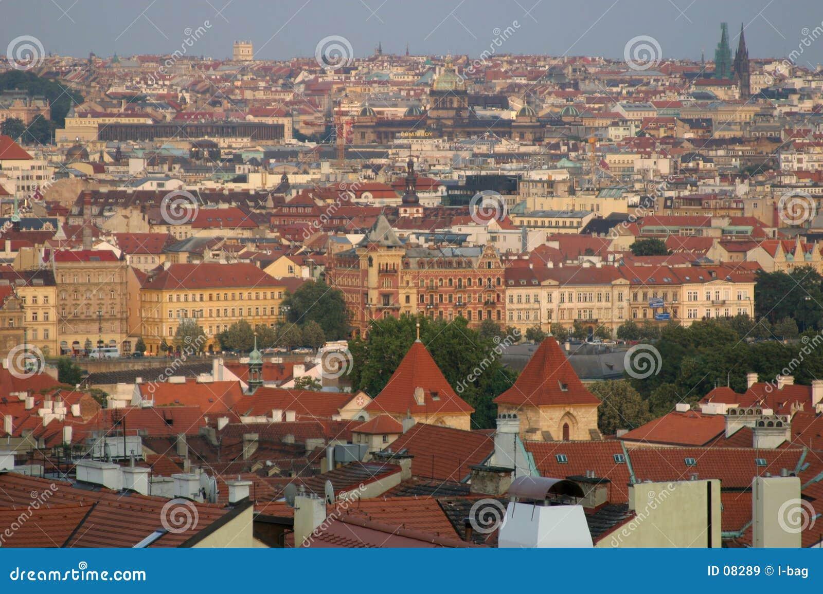 Opinião do telhado de Praga
