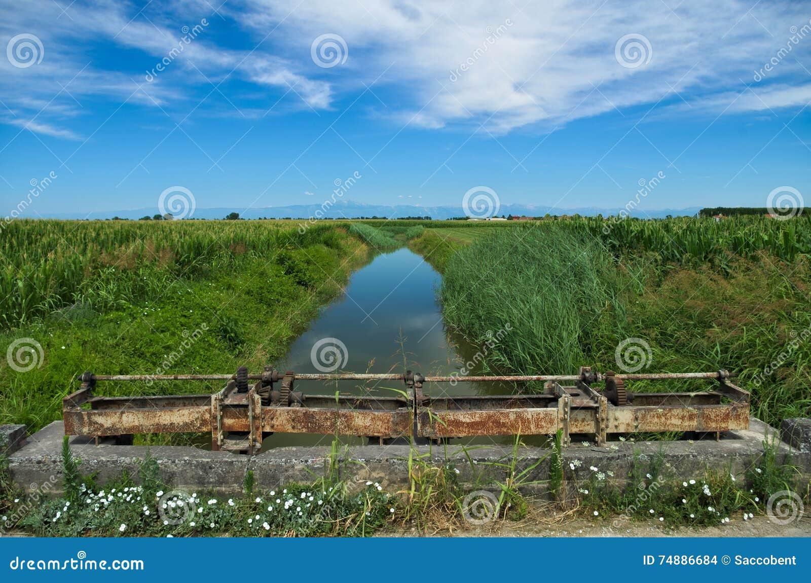 Opinião do verão de um rio quieto na planície Venetian
