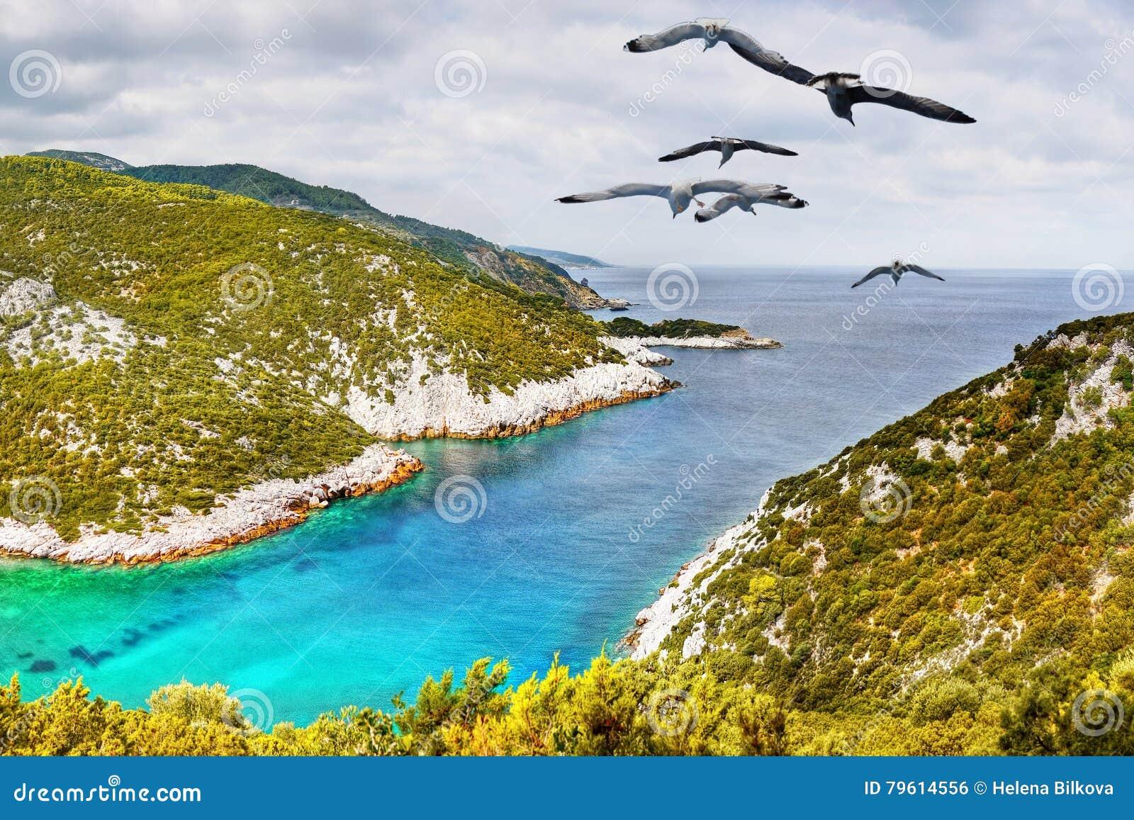 Opinião litoral da ilha excitante