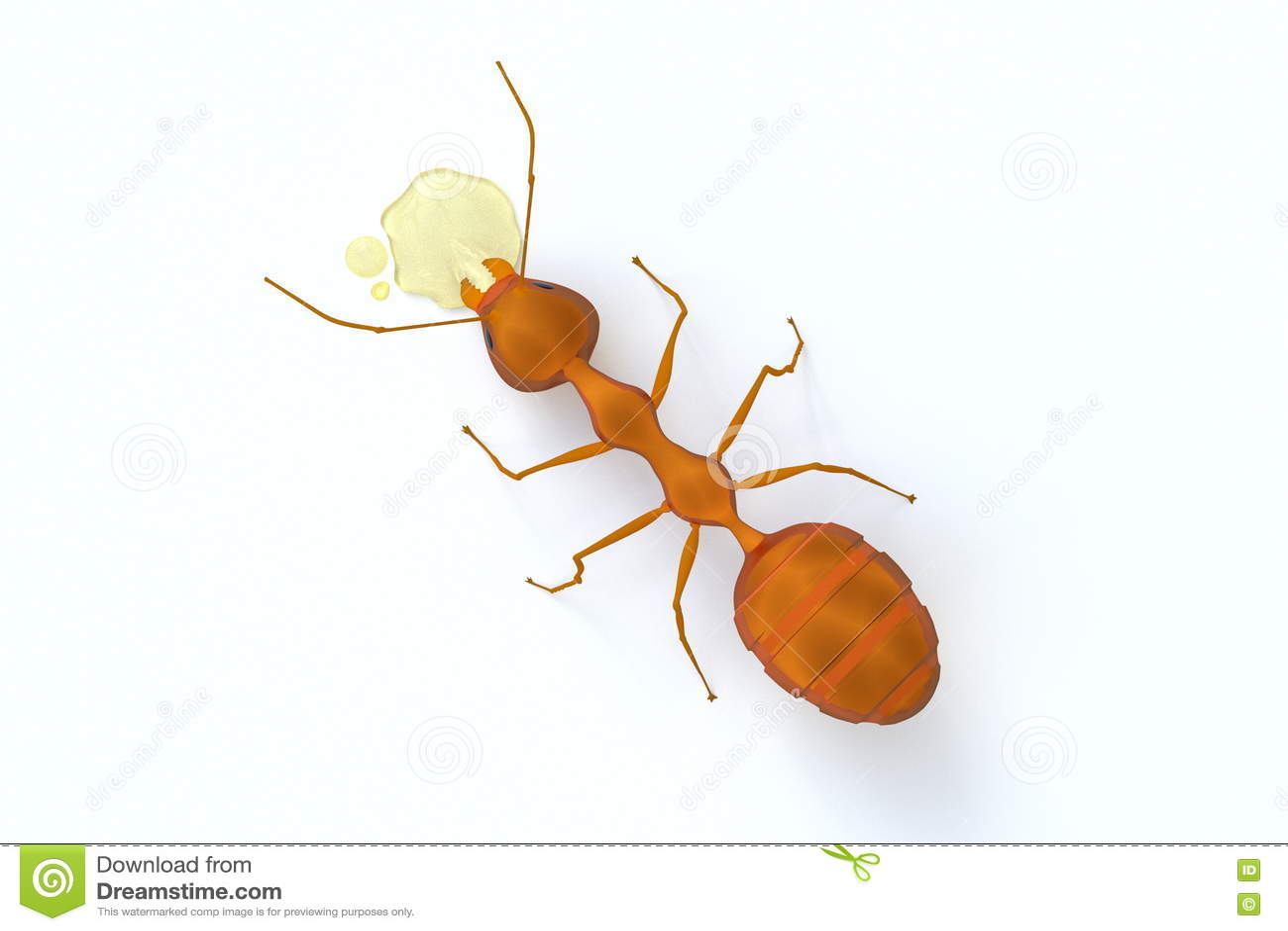 A opinião superior uma formiga alaranjada que come o xarope