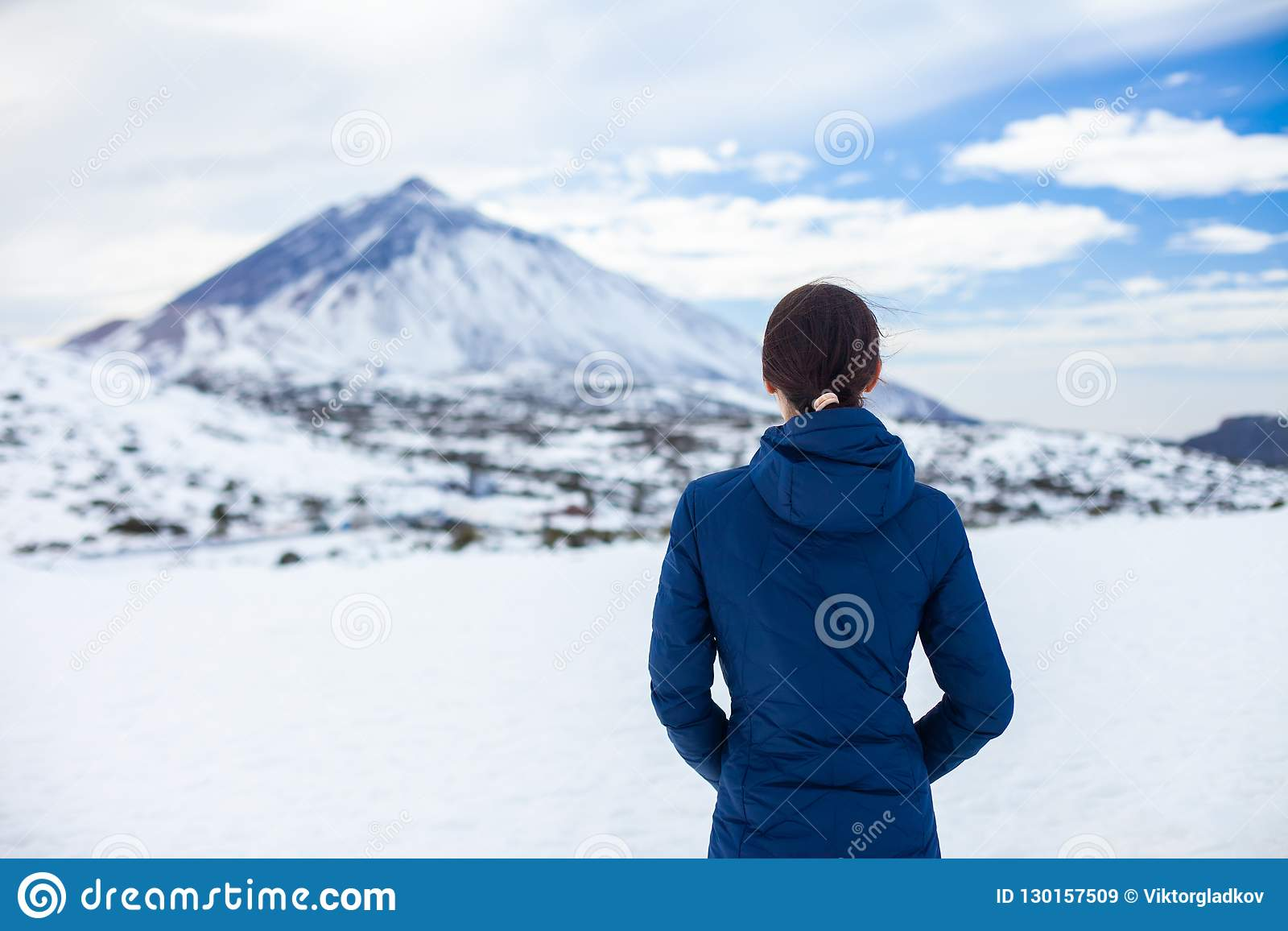 A opinião traseira a mulher do viajante aprecia montanhas da neve