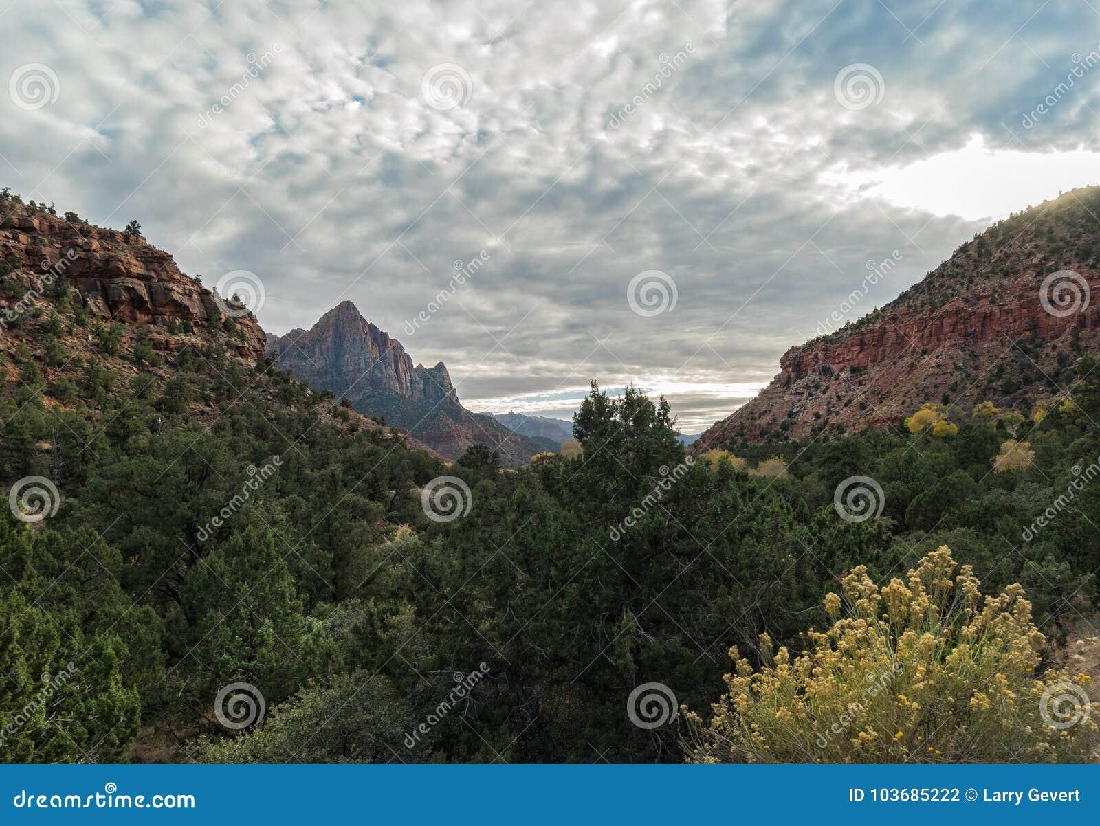 Opinión al vigilante, Zion National Park