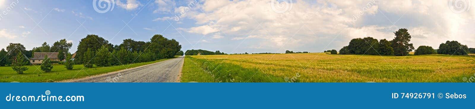 Opinión amplia del campo panorámico del camino con los árboles y el pueblo detrás Paisaje rural del verano Campo pastoral europeo