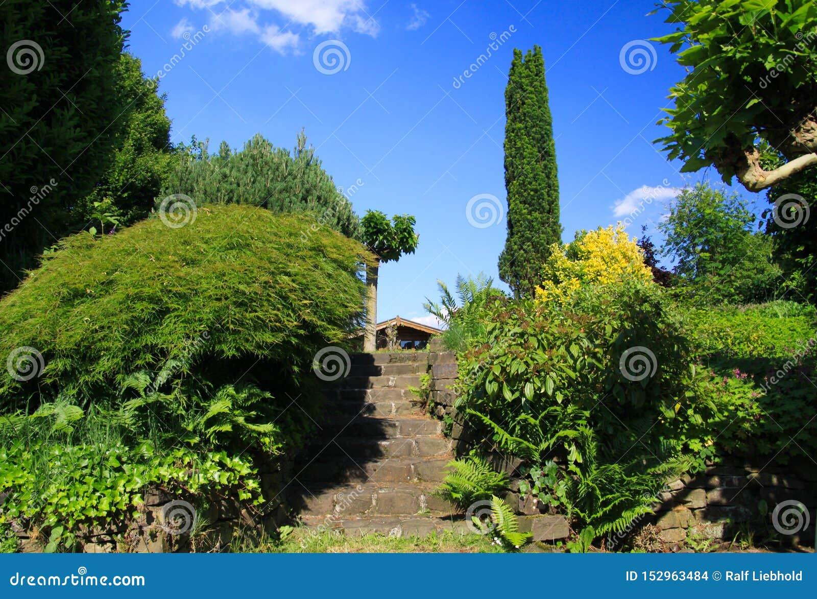 Opinión de ángulo bajo sobre los pasos de piedra en jardín alemán con dos niveles y árboles verdes contra el cielo azul - Alemani