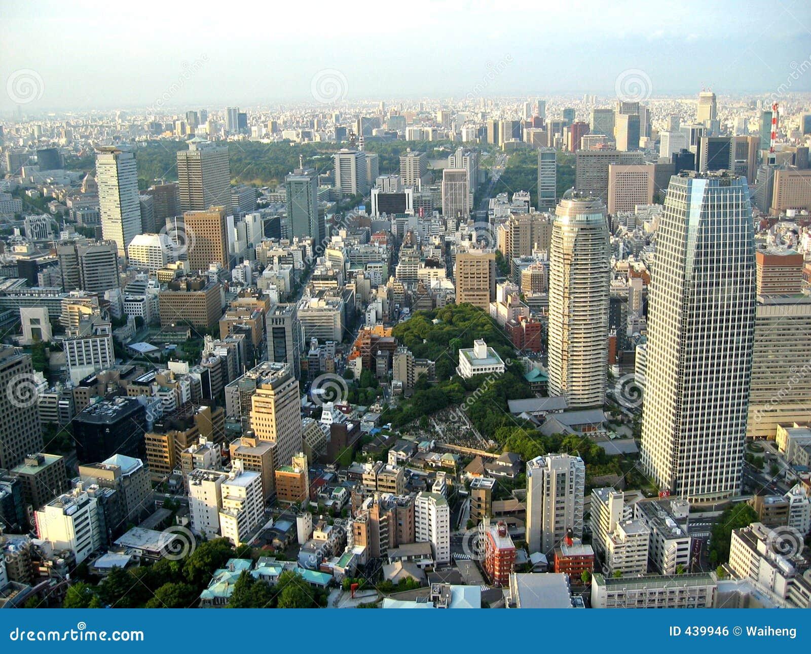 Opinión de la ciudad de Tokio
