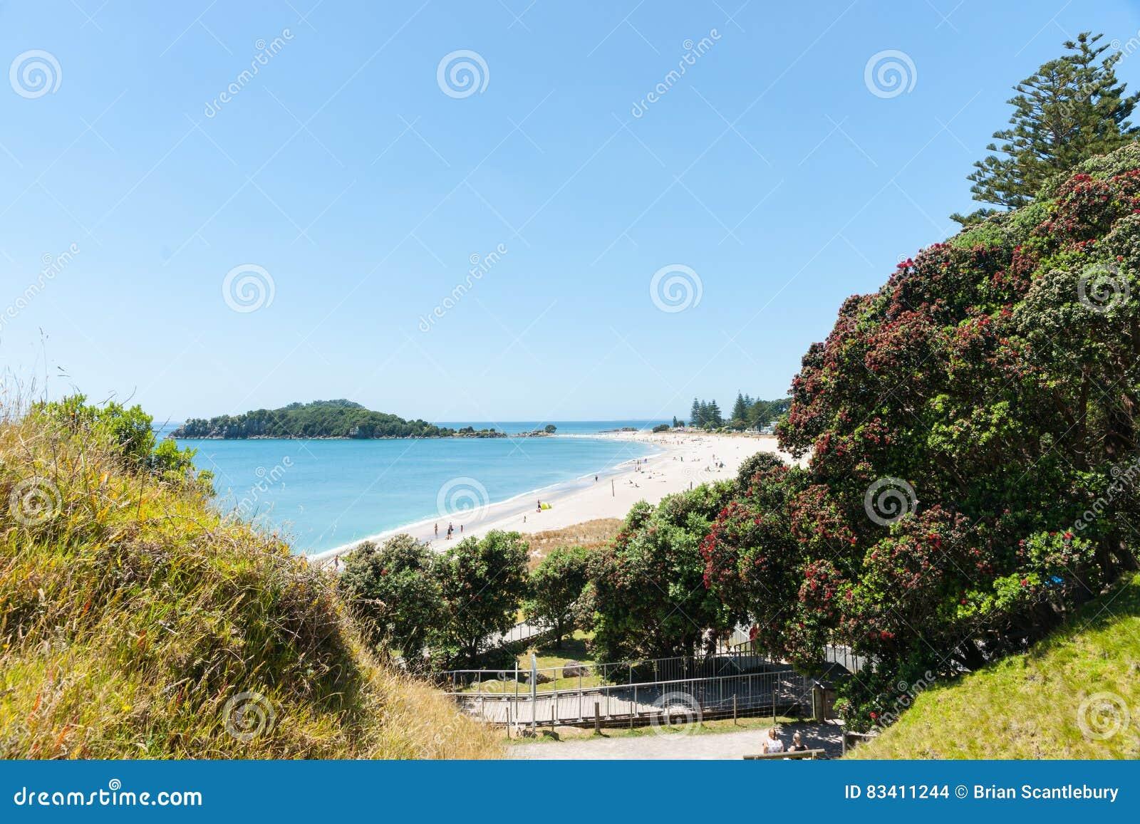 Opinión De La Playa Del Océano Encima Y Enmarcado Por Los árboles ...