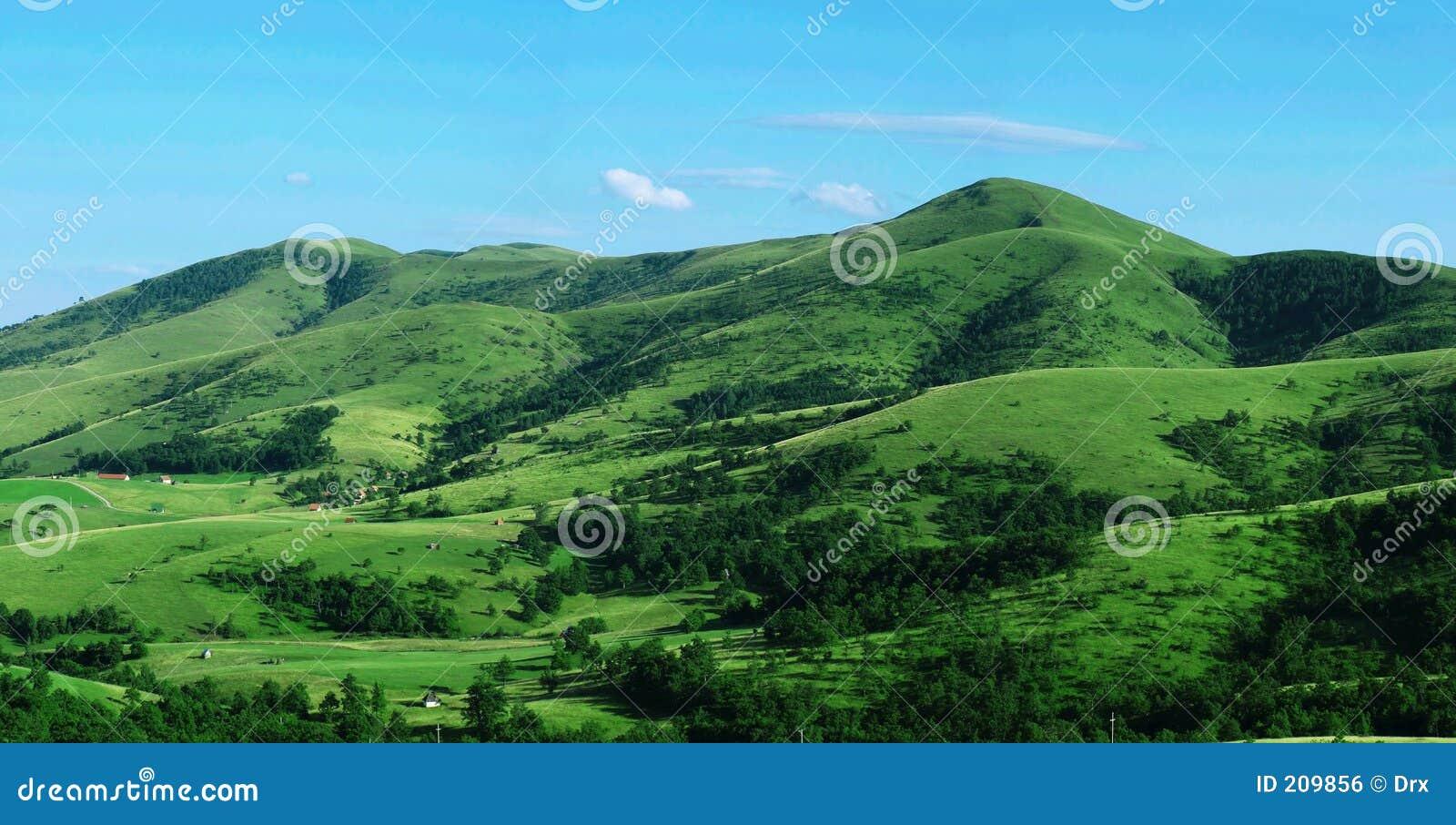 Opinión del panorama de la colina verde