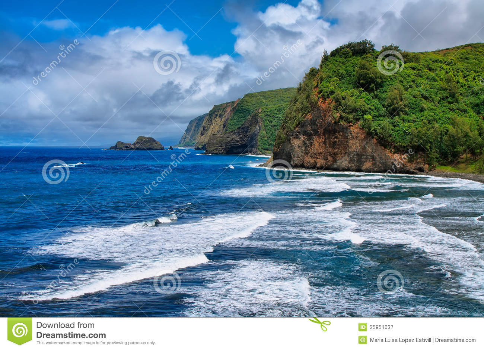 Opinión del valle de Pololu en Hawaii