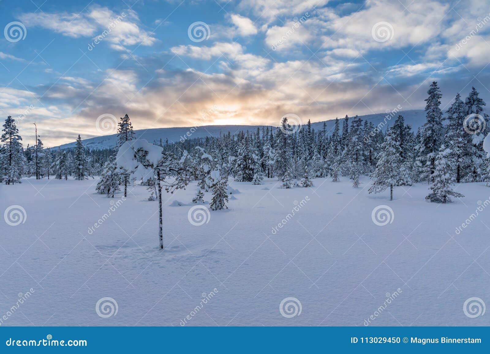 Opinión hermosa del paisaje de las montañas suecas
