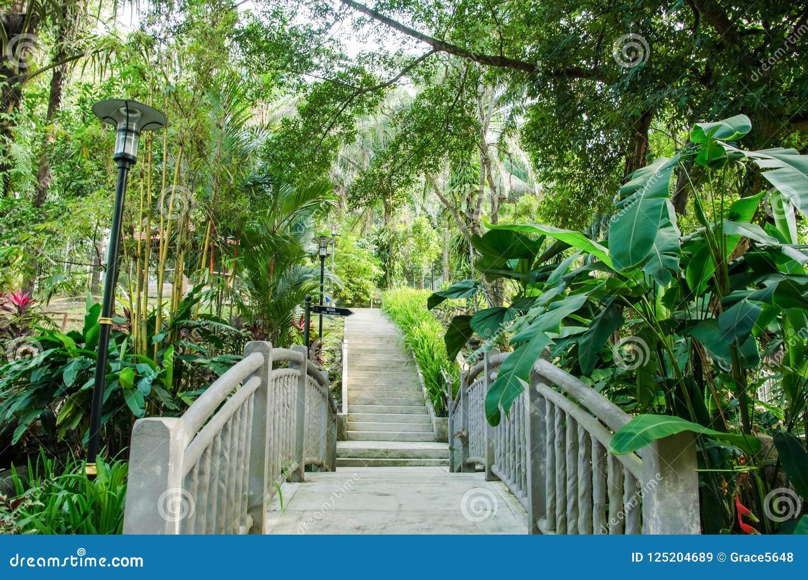 Opinión Kuala Lumpur Perdana Botanical Gardens, Malasia del puente