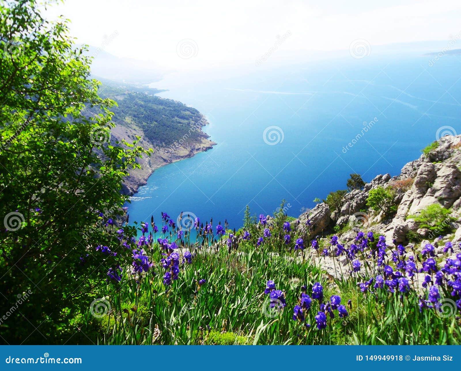 Opinión magnífica sobre el mar adriático en Dalmacia, región en Croacia, Europa