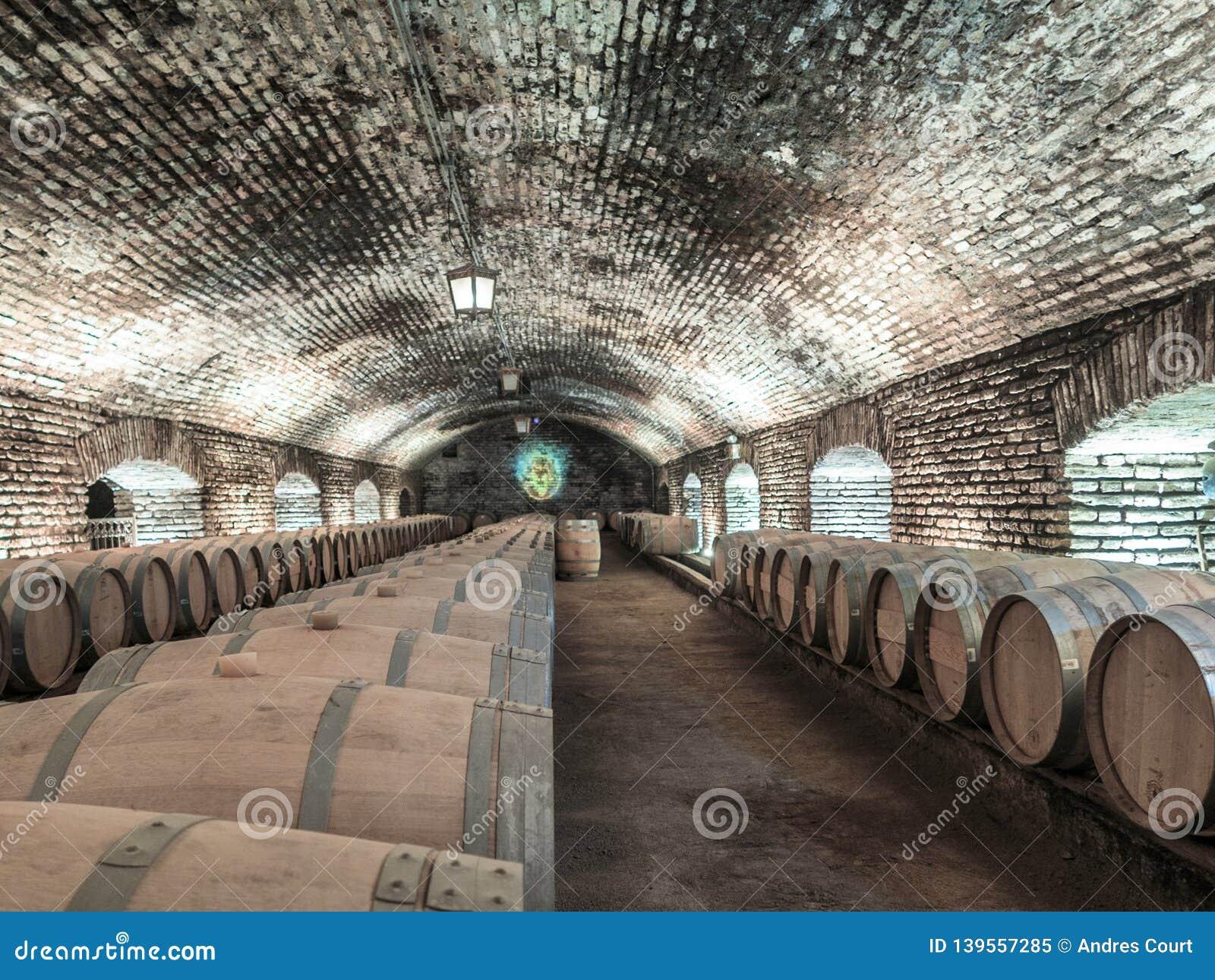 Opinión subterráneo del distilery del vino del chilena