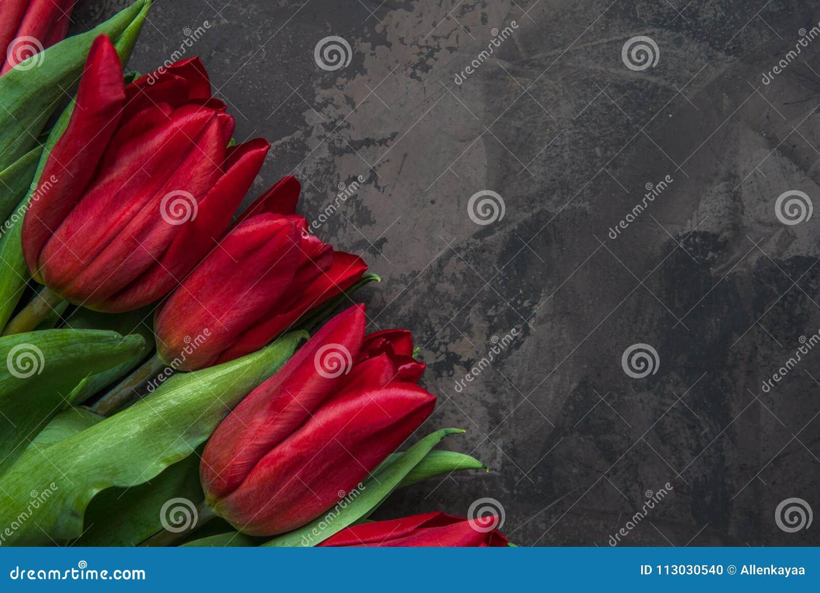 Opinión superior de los tulipanes rojos con el espacio de la copia