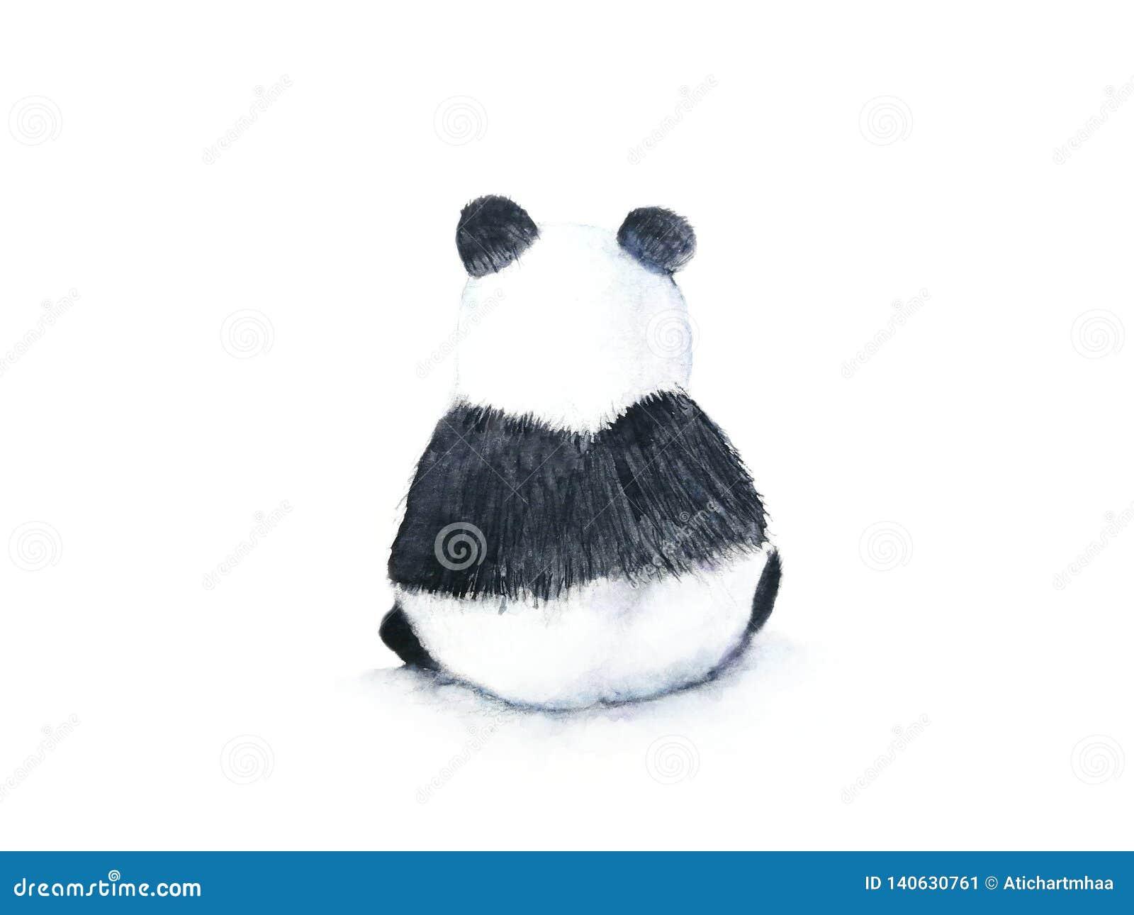 Opinión trasera de la acuarela de un fondo blanco aislado exhausto de la mano de la panda