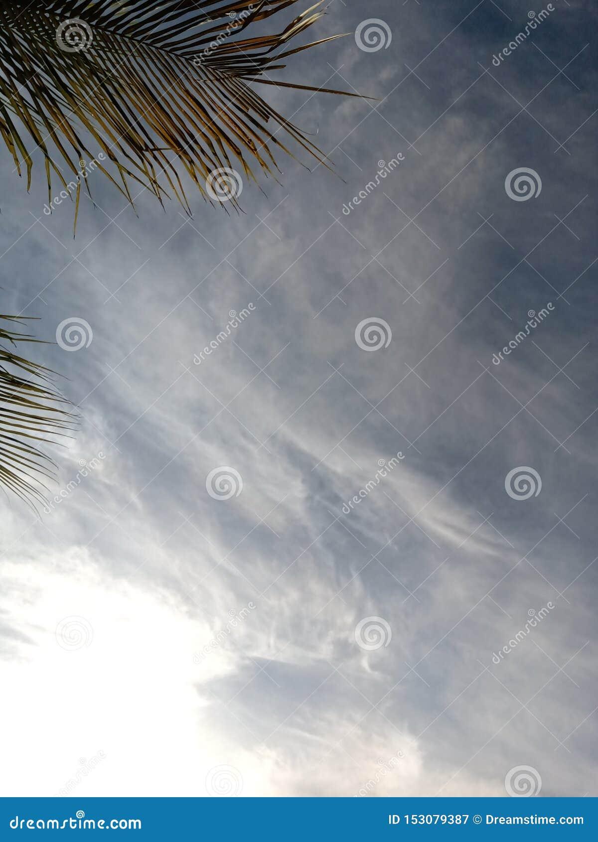 Opini?n hermosa del cielo