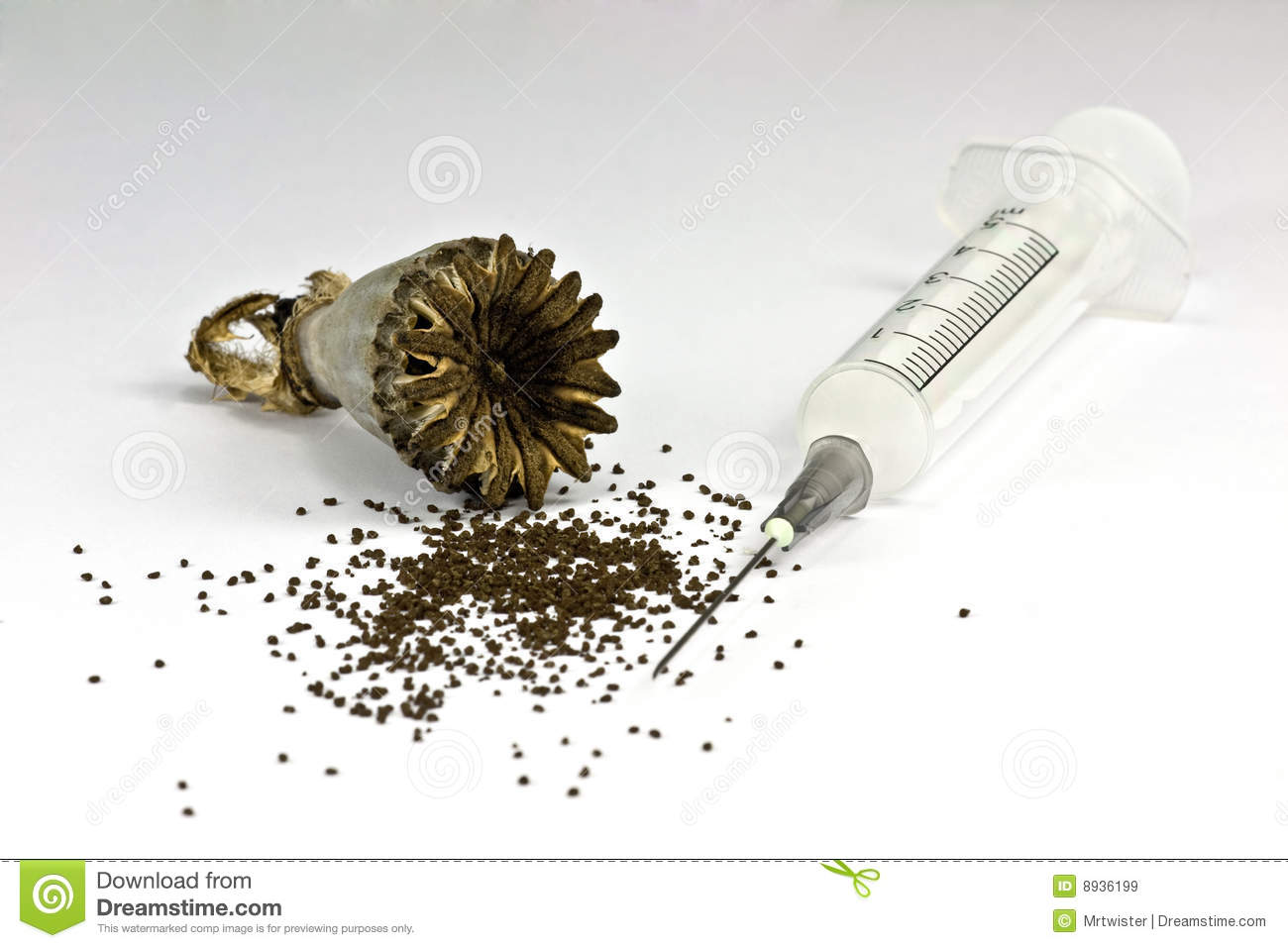 Close-up of opium poppy seed and a syringe on white background.