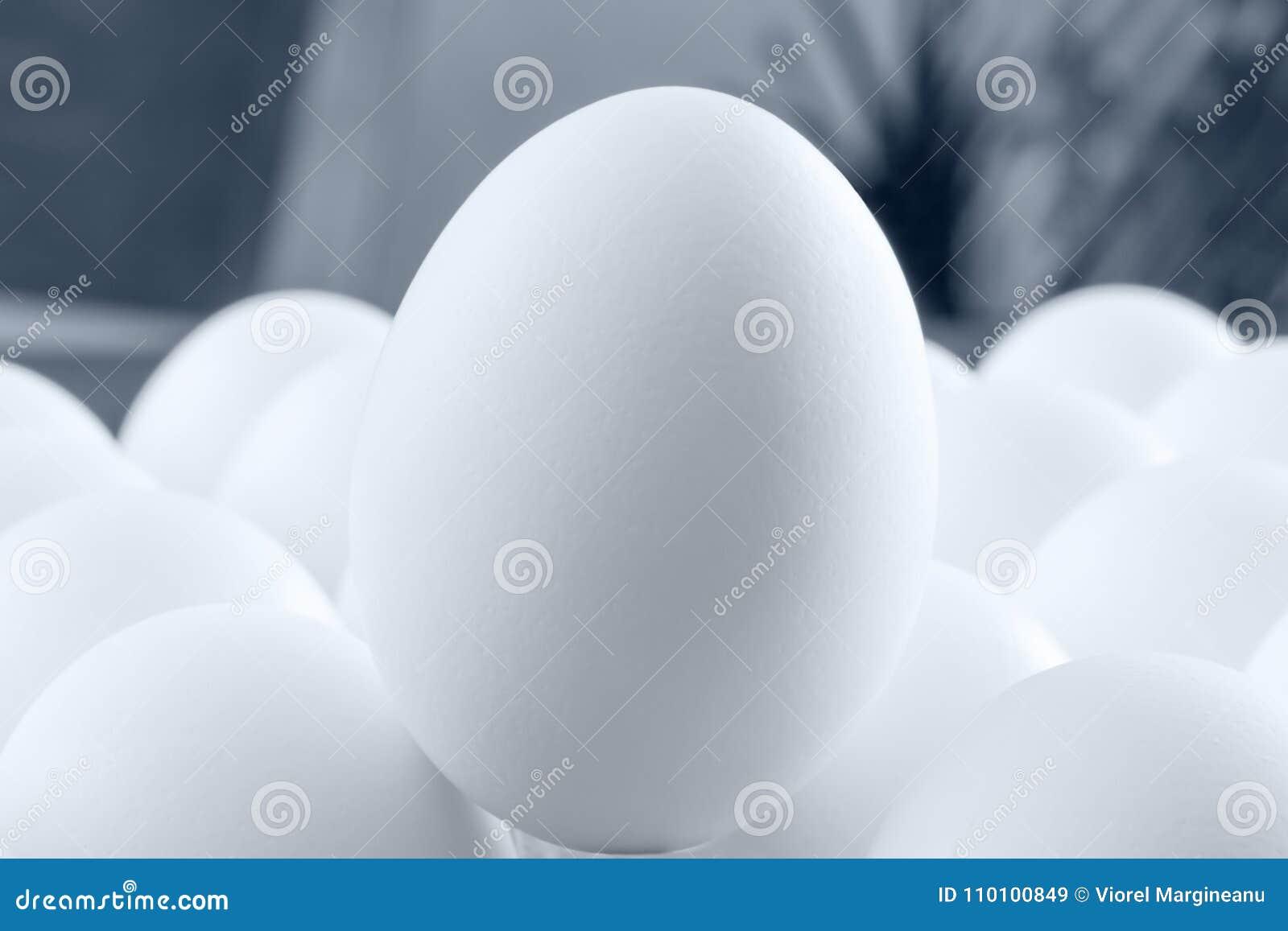 Opmerkelijk wit ei in extreme macrosleutel