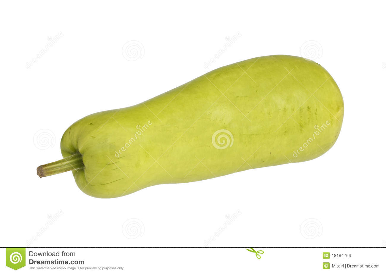 Opo Squash Or Bottle Gourd Asian Vegetable Royalty Free Stock Image ...