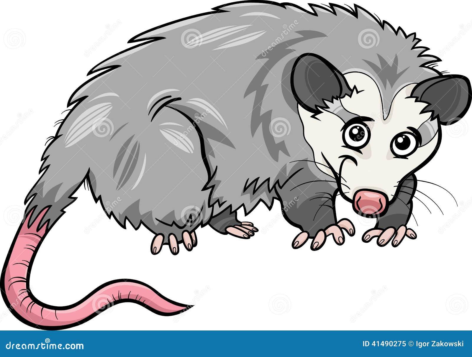 Opossum Animal Cartoon Illustration Stock Vector - Image ...
