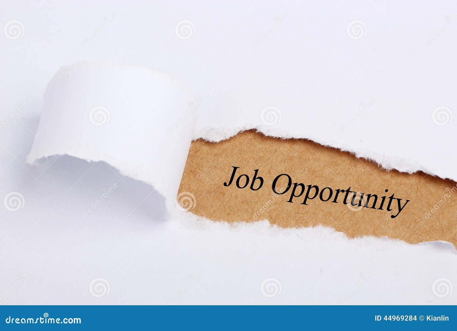 Opportunità di lavoro