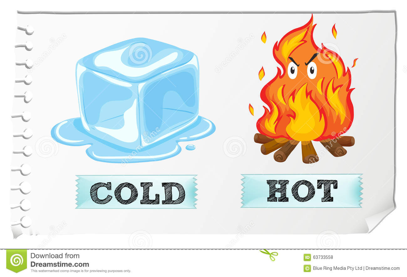 business plan hot and cold Vat in the food industry  blowing hot and cold  if you're self-employed and thinking of starting a business, we can help plan ahead and get your accounts in.