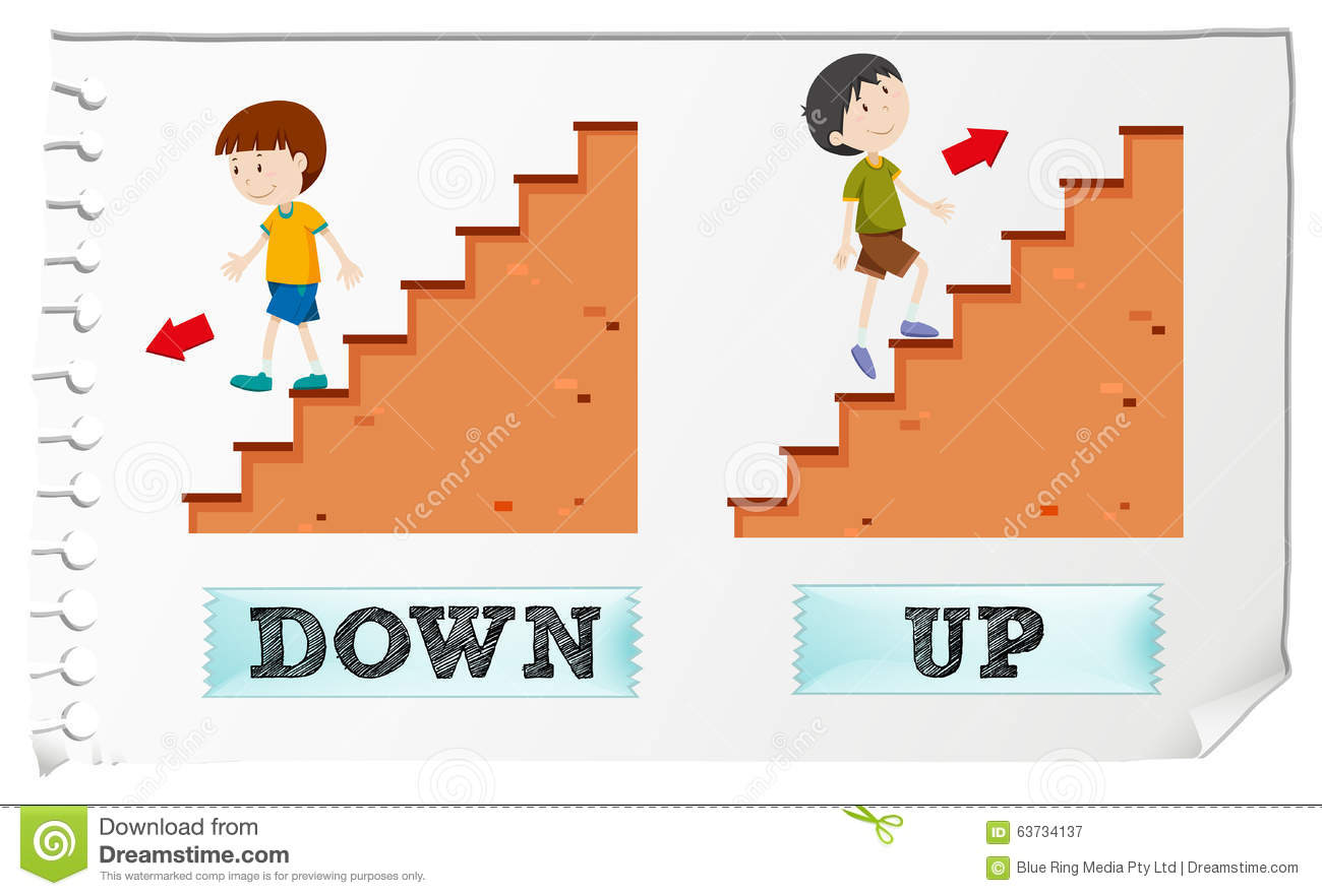 up and down up and down Is a website or site down easy way to check if a site is down for everyone or just me plus other tools too.