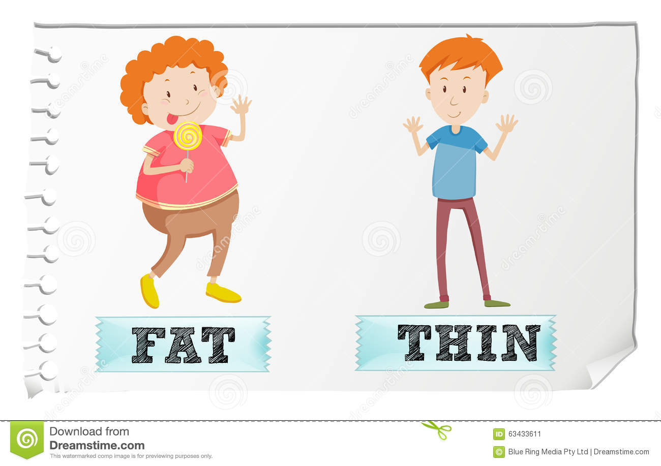 Worksheet Opposite Objects opposite adjectives fat and thin stock vector image 63433611 thin