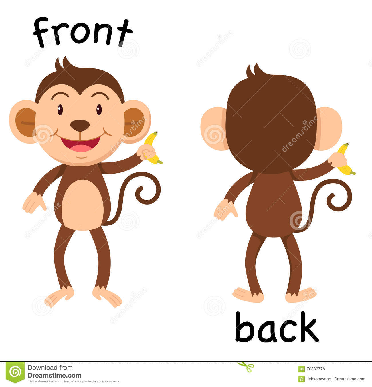 opposite words front and back vector stock vector illustration of