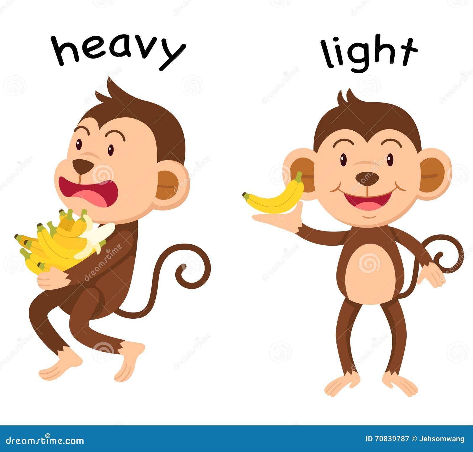 opposite words heavy and light vector stock vector illustration of