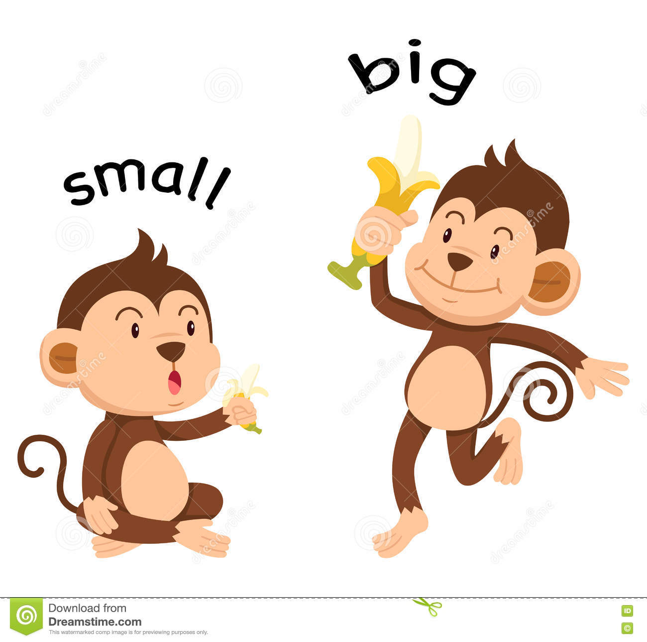 opposite words small and big stock vector illustration of drawing