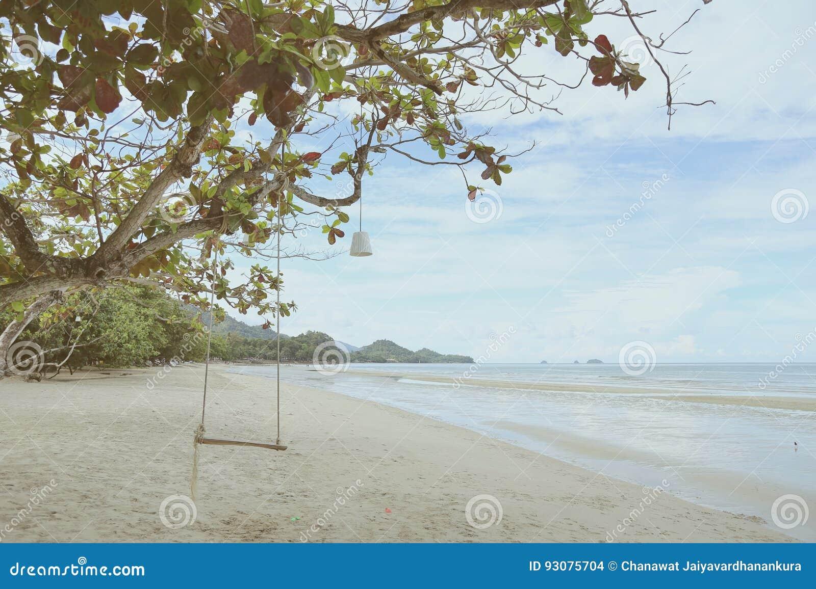 Opróżnia drewnianego huśtawkowego obwieszenie na gałąź w słonecznym dniu blisko plaży koh Chang, zatoka Tajlandia, rocznika filtr