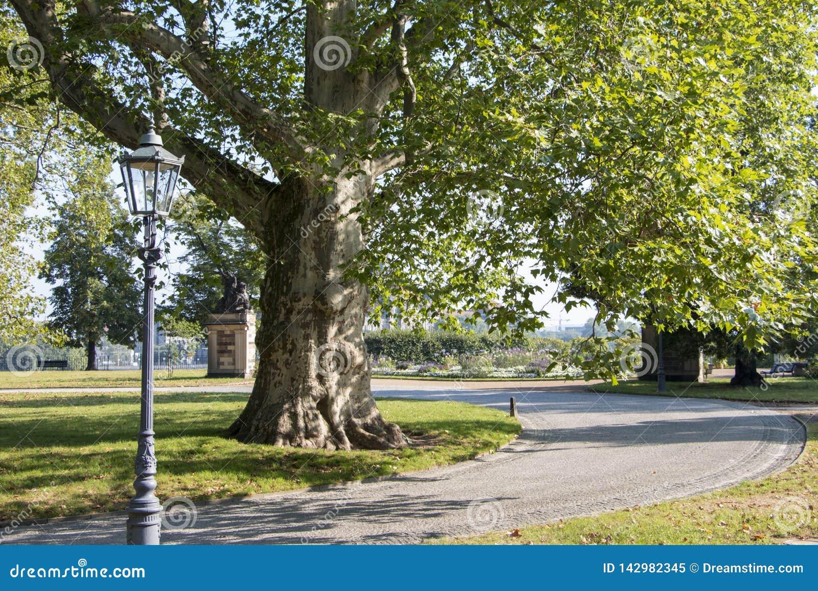 Opwindende mening van aard in het stadspark