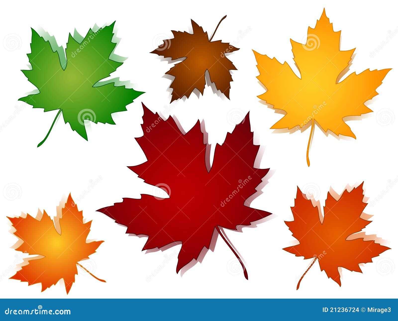 Opzioni di colore di caduta delle foglie di acero - Caduta fogli di colore stampabili ...
