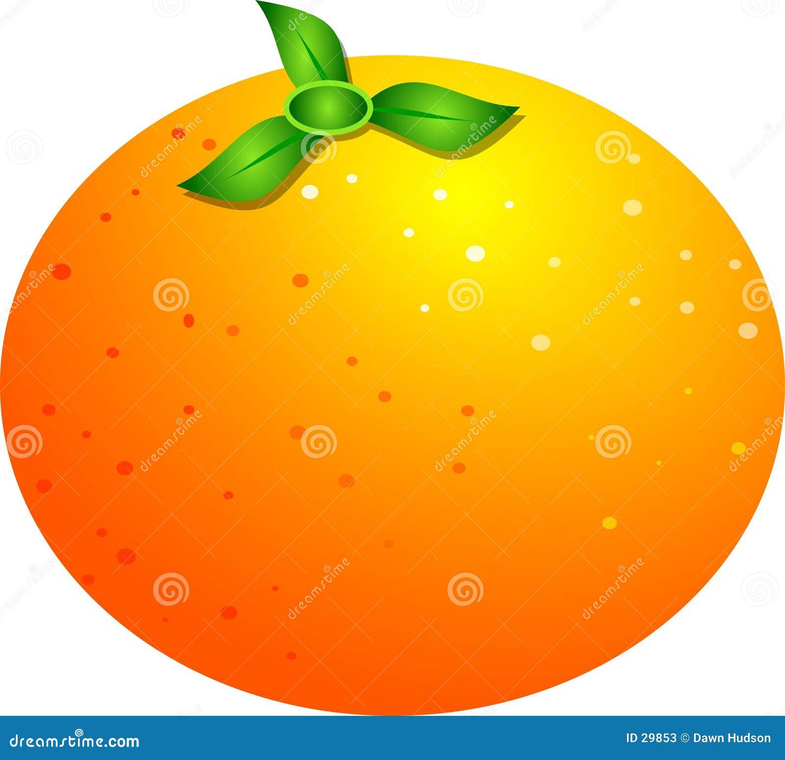 Download Orange stock abbildung. Illustration von nahrung, reif, edibles - 29853
