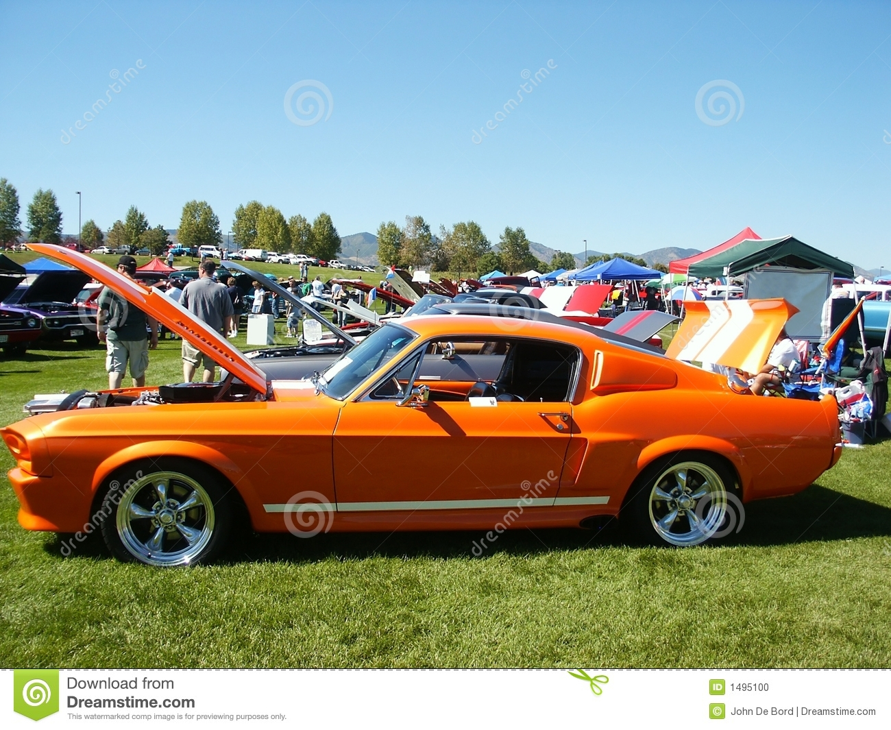 orange american muscle car stock photo image 1495100. Black Bedroom Furniture Sets. Home Design Ideas
