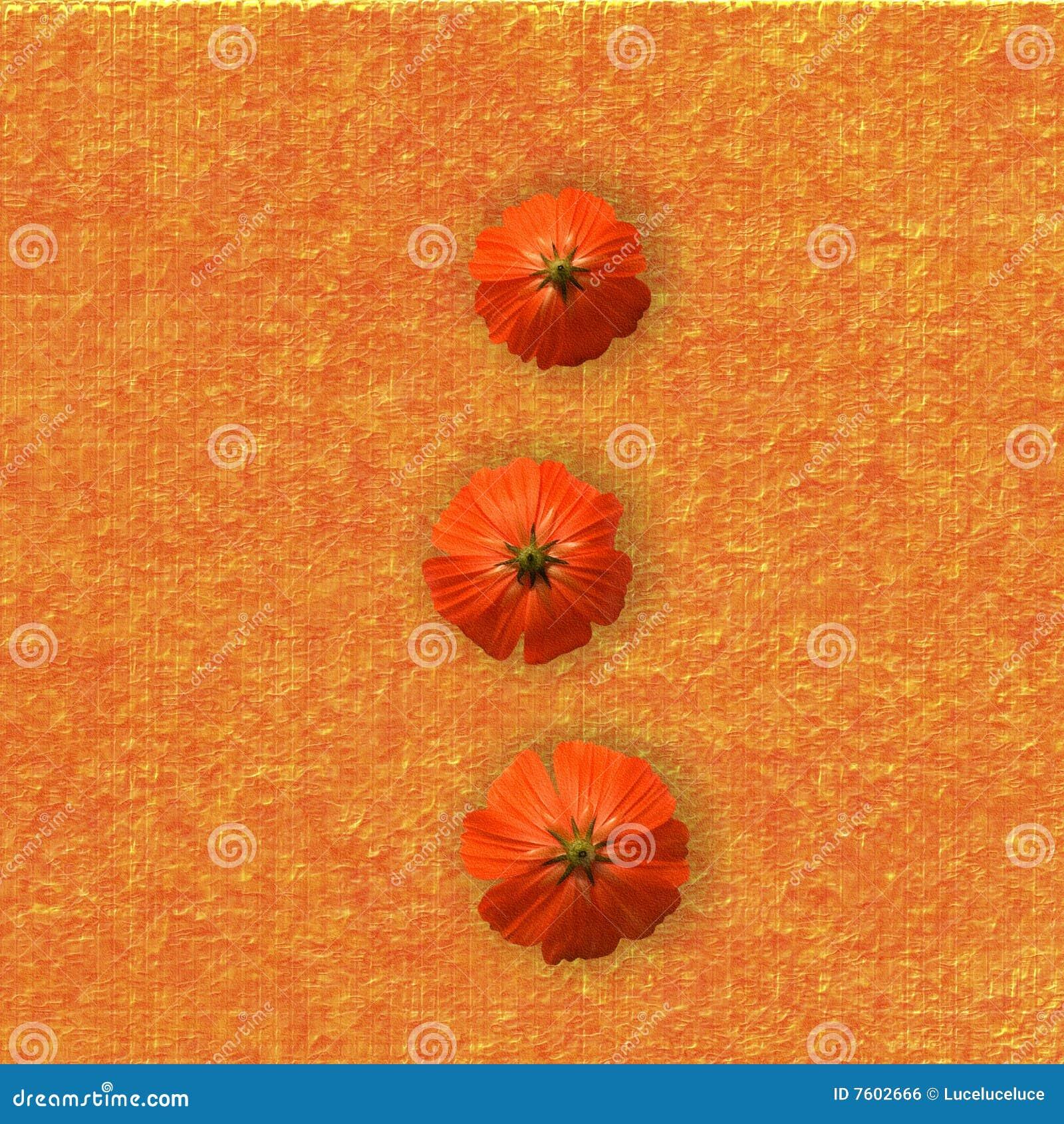 Orange Blumen Auf Orange Hintergrund Stock Abbildung