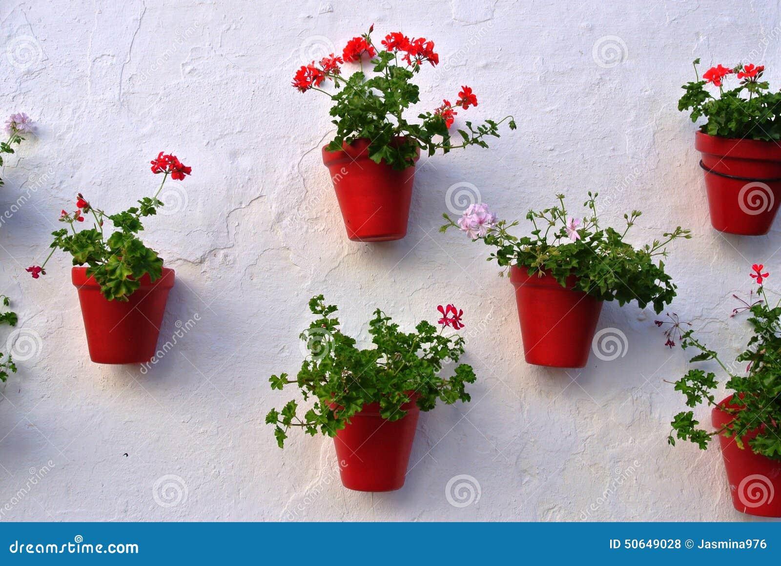 Orange Blumentopfe Auf Weisser Wand Stockfoto Bild Von Betrieb