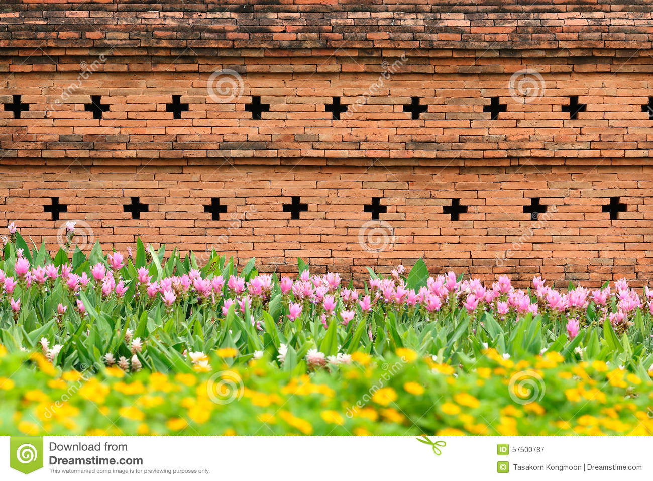 Orange Brick Wall With Flower Garden For Pattern Stock Image Image
