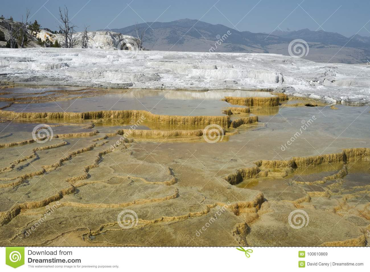 Mammoth Hot Springs Terrace Geysers, Yellowstone Stock Image - Image