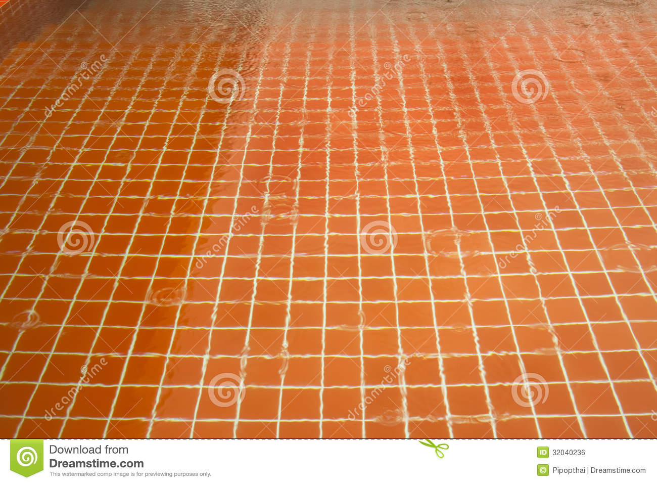 Orange ceramic tile in swimming pool stock photo image for Swimming pool ceramic tile