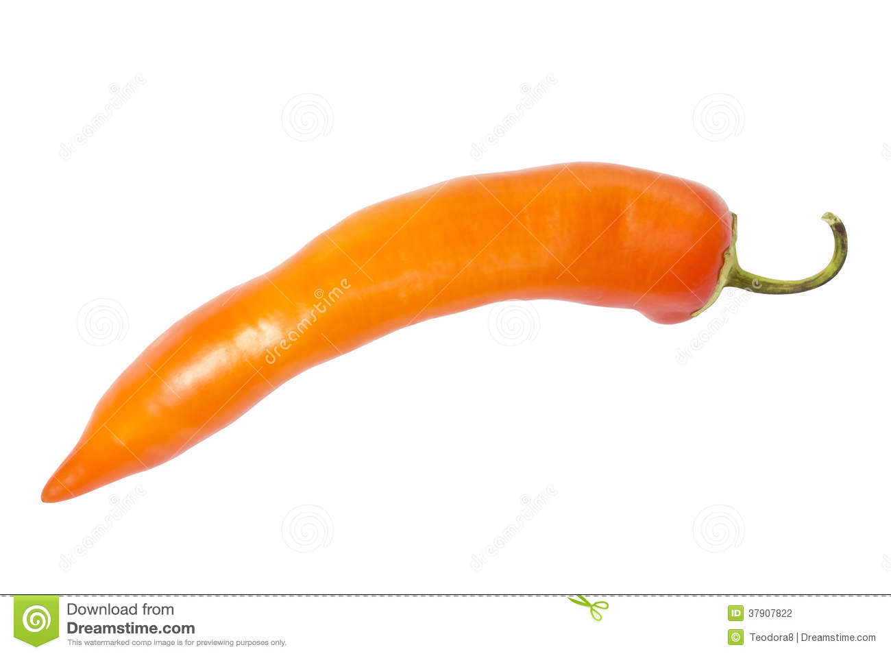 Stock Photography: Orange chili pepper. Image: 37907822