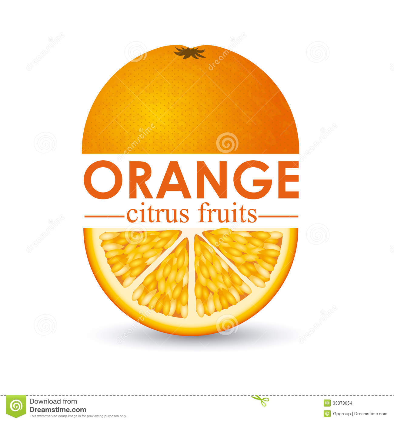 Orange Fruit Vector Orange citrus f...