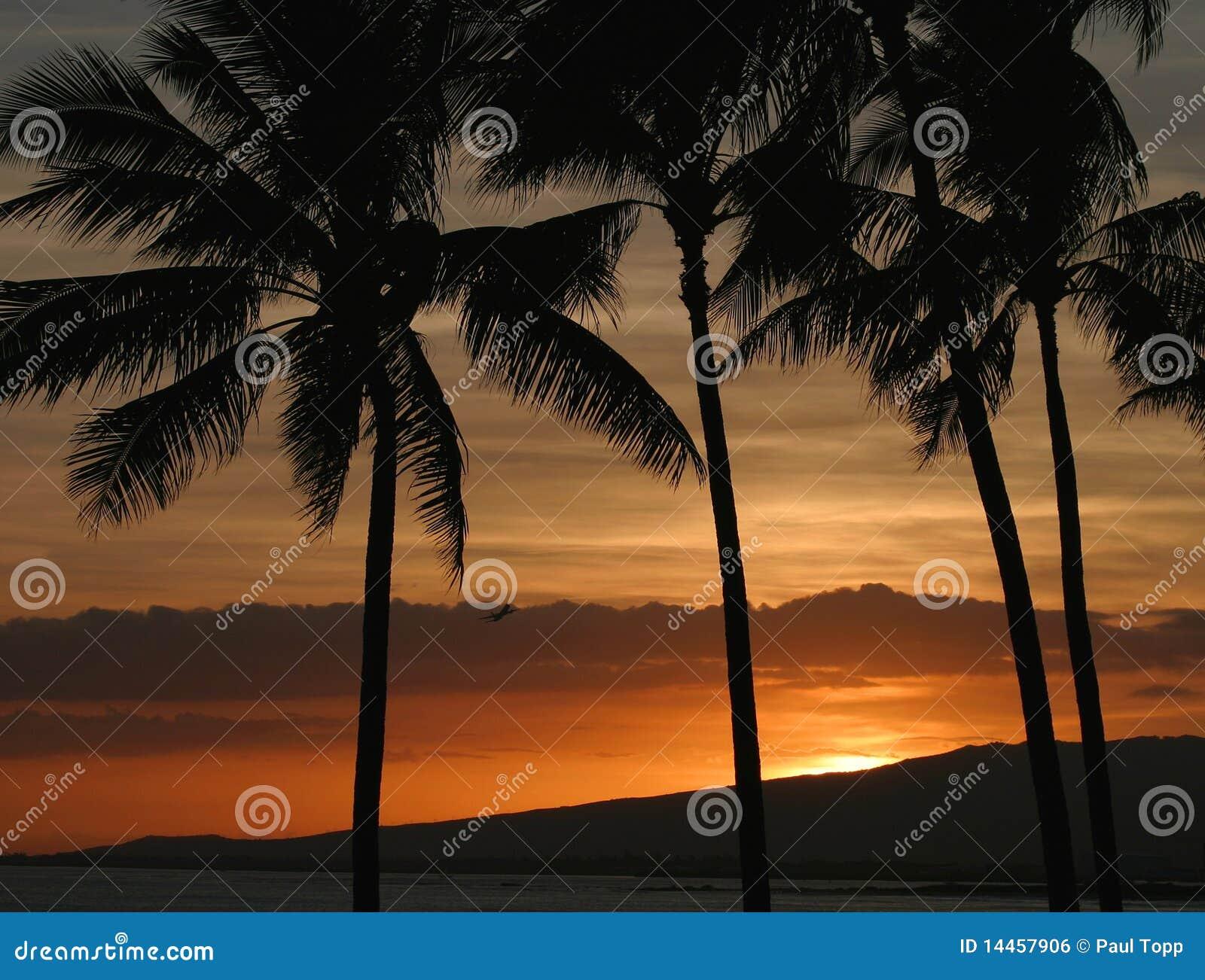Orange Color Hawaiian Sunset in Honolulu Hawaii