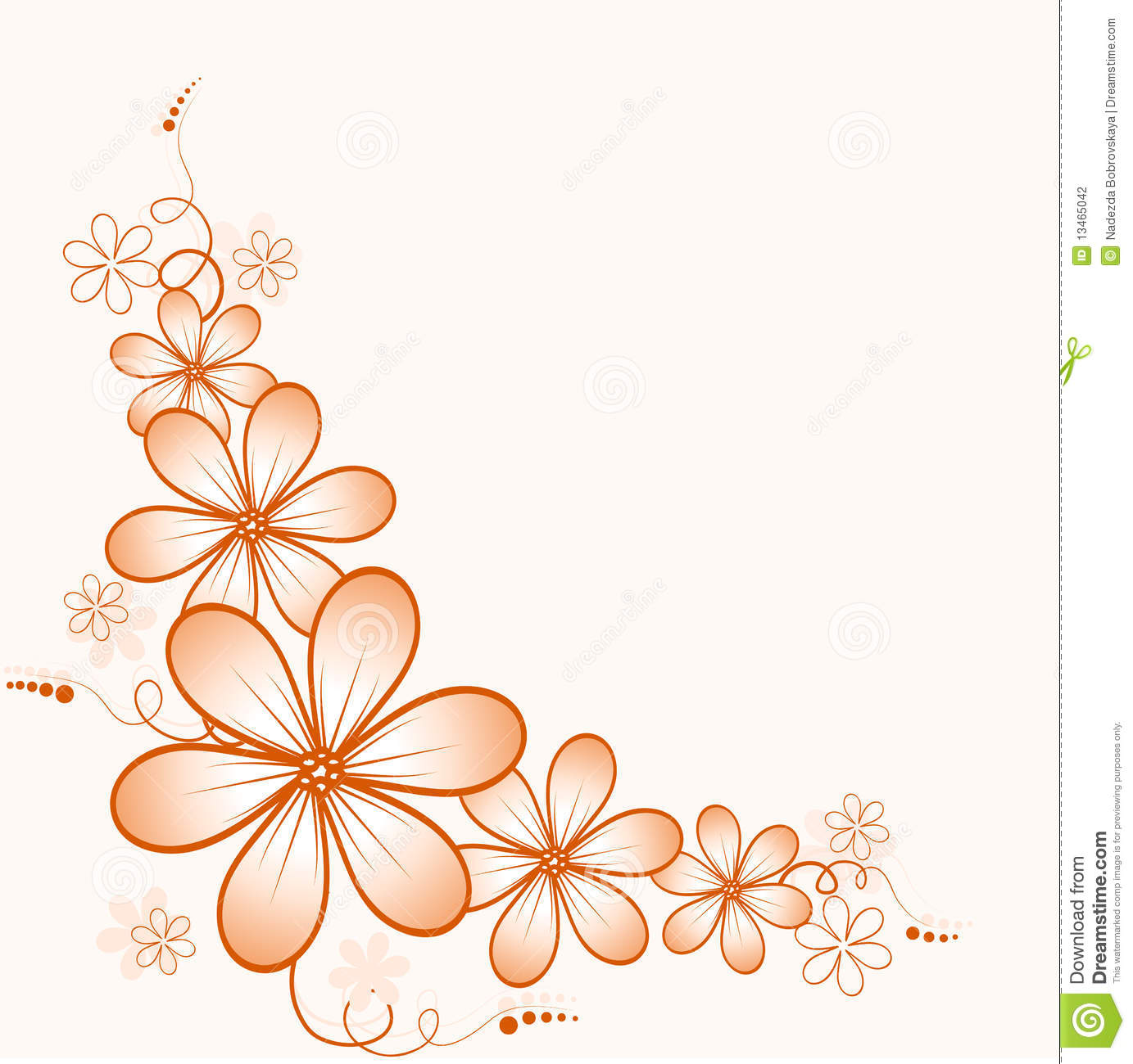 Orange Coner Flowers Stock Photography - Image: 13465042