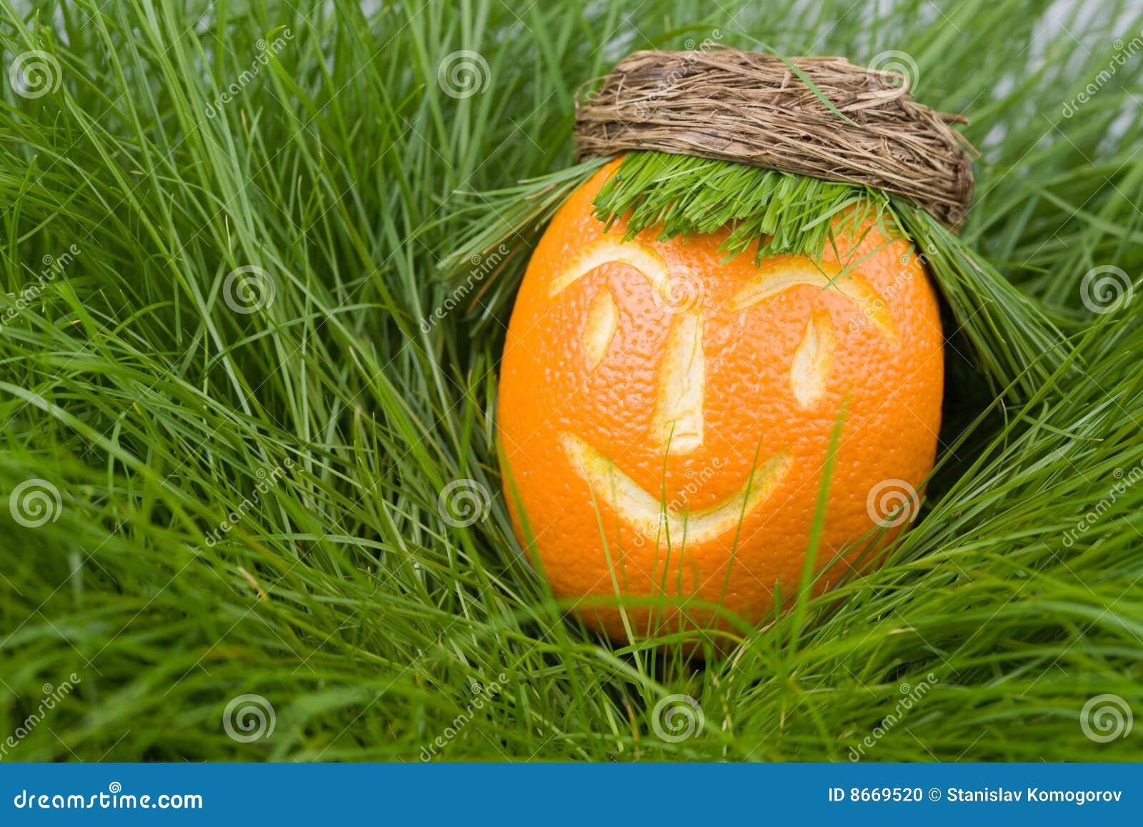 Orange d herbe de poupée